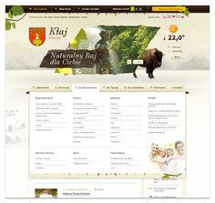 Klaj.pl by Vision Trust , via Behance