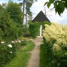 Hvitträskin puutarha