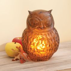 Owl Light - Acacia.  I love different kinds of lights.