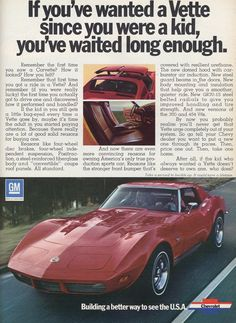 1973 Corvette - exactly my baby. Big Block of course!