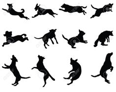 28068066-Black-silhouettes-of-jumping-dogs-vector-Stock-Vector-jumping-silhouette.jpg (1300×1040)