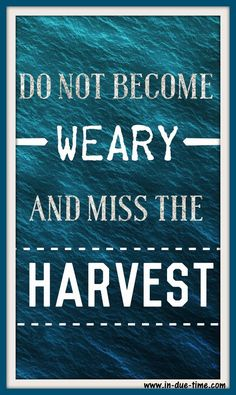 """Stop comparing your plowing season to someone else's harvest season."""