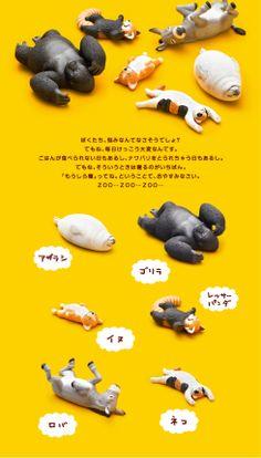 ZooZooZoo | パンダの穴 | スペシャルサイト | タカラトミーアーツ