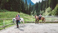 Gratis Pony reiten im Rahmen des Happy-Club-Programmes oder Reitstunden buchen, jeder wie er mag. Der Reitplatz ist direkt beim Hotel und natürlich können sich die Kinder auch den Pferdestall mit unseren 4 Reitponys ansehen. Cow, Horses, Animals, Pony Rides, Petting Zoo, Child Care, Summer Vacations, National Forest, Alps