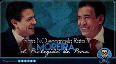 """""""Rata NO encarcela Rata"""": Moreira, El 'Protegido' de Peña"""