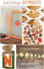DIY Projects Using Fall Leaves