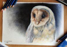 Nádherne nakreslená Plamienka Driemavá :O