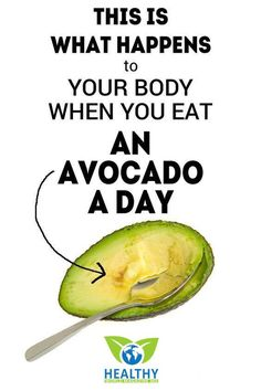 Avocados are considered one of the world's best foods. They contain more than 25 essential nutrients, such as vitamins A, B, C, E, and K, as…