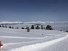 PowPow@Kreischberg Berg, Snow, Mountains, Random, Nature, Travel, Outdoor, Voyage, Outdoors