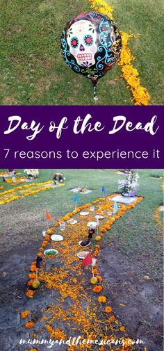 The Day of the Dead - 7 reasons to experience this unique Mexican tradition. traditions The Day of the Dead - 7 reasons to experience it Mexican Night, Mexican Holiday, Mexican Party, Latin Decor, Mexico Day Of The Dead, Culture Day, Mexican People, Mexican Crafts, Holiday Day