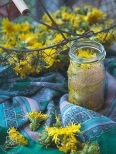 Dandelion Wish, Go Green, Preserves, Food Inspiration, Beautiful Flowers, Herbalism, Mason Jars, Healthy Living, Clean Eating