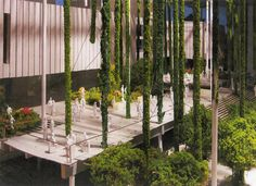 Miami Art Museum   Vertical Garden Patrick Blanc
