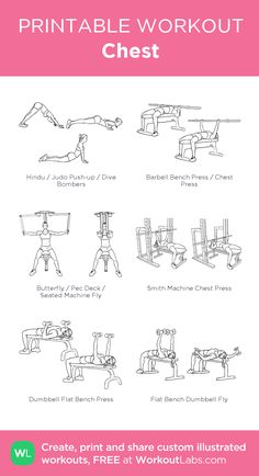 visual workout created at Chest And Tricep Workout, Chest And Back Workout, Chest Workout Women, Best Chest Workout, Biceps Workout, Tricep Workout Women, Womens Chest Exercises, Chest Workouts For Women, Shoulder Workout Women