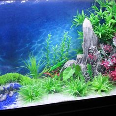 15M Length Aquarium Ocean Wallpaper Fish Tank Background Picture Background Painting