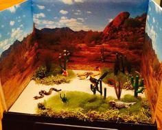 Desert Diorama: