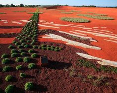 The Australian Garden wins World Landscape of the Year 2013