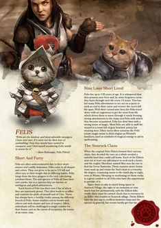 Tagged with dnd, homebrew, dungeons and dragons, Shared by ImJasonWrong. D&D Felis Race Homebrew Dungeons And Dragons Races, Dungeons And Dragons Homebrew, Dungeons And Dragons Characters, Dnd Characters, Fantasy Characters, Dungeons And Dragons Classes, Character Concept, Character Art, Cat Races