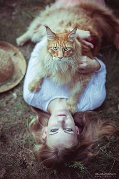 """(Maine Coon Cat) * * """" Don'ts gets any ideas aboutz peelin' meez off her.She be me human first, DEN yers."""""""