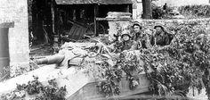 Sd.Kfz 251/9 en Normandia, verano de 1944