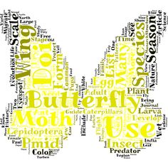 Butterfly word cloud art created by Alex Word Cloud Maker, Word Cloud Art, Word Clouds, Word Art, Create Word Cloud, Create Words, Word Pictures Art, Picture Dictionary, Typography Poster Design