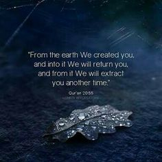Quran Quotes About Life And Death Islamic Quotes, Islamic Inspirational Quotes, Religious Quotes, Islamic Teachings, Islamic Messages, Muslim Quotes, Quran Verses, Quran Quotes, Hindi Quotes
