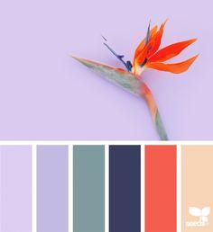 color flora summer palette by design seeds Colour Pallette, Colour Schemes, Color Trends, Color Combos, Flora Design, Design Color, Design Seeds, Color Balance, Color Stories
