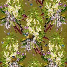 Bellbirds & Kakabeak (55cm) Flora And Fauna, Limited Edition Prints, Watercolor Paintings, Digital Prints, Vibrant, Bird, Sleeve, Medium, Projects