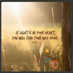 Light in your heart