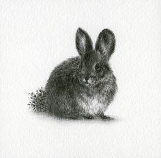 Illustrations byCourtney Brims