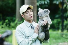 Jackson and koala