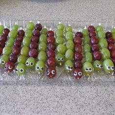 The Bug Hunt: Caterpillar Grapes for Kids Bug Party Bug Snacks, Party Snacks, Butterfly Party, Butterfly Birthday, 6th Birthday Parties, Birthday Fun, Birthday Ideas, Snake Party, Reptile Party