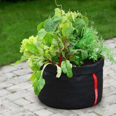 ST9200_1 Shops, Garden Pots, Beautiful Gardens, Planter Pots, Plants, Urban, Money, Elegant, Bags