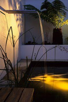 Courtyard Garden in Pool - 15 Courtyard Garden Ideas