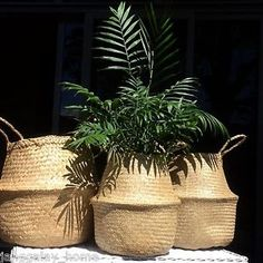 Seagrass Woven Collapsible Round Basket Storage Plant POT Cover Natural SET OF 2 | eBay