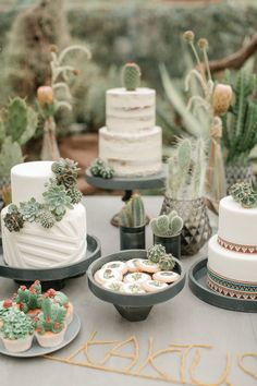 winter rustic wedding ideas—rustic and elegant wedding cake with succulents and cactus Do you choose canned meals or dry […] Cactus Centerpiece, Decoration Cactus, Cactus Cake, Cactus Cactus, Dessert Party, Diy Dessert, Wedding Desserts, Wedding Decorations, Wedding Ideas