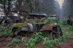 Ein Autofriedhof. In Chatillon (Belgien) gibt es einen verlassenen Schrottplatz, der seit einigen Jahren durch den Wald und die Natur zurück erobert wird.