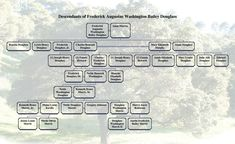 002 B. Morris Jr.'s family tree Copyright © 2014 by
