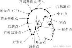 """""""剪髮理論""""에 대한 이미지 검색결과 Line Chart, Diagram"""