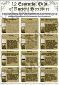 Save On The Twelve Oils Of Ancient Scripture Kit From Young Living! Hyssop Essential Oil, Yl Essential Oils, Essential Oil Diffuser Blends, Young Living Essential Oils, Anointing Oil Prayer, Elixir Floral, Healing Oils, Holistic Healing, Yl Oils