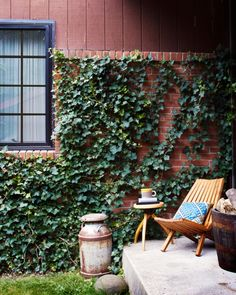 back porch with ivy wall