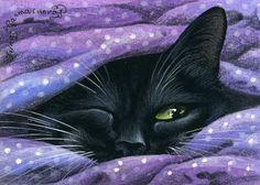 peek a boo black cat