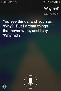 Wise Siri