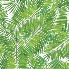 wallpaper tropical patterns | Tropical Leaf Patterns Pictures