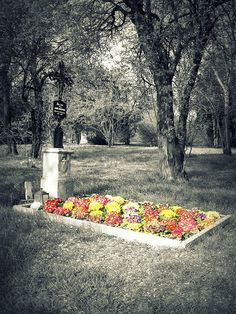 Act V, Scene i Before Ophelia's funeral begins Hamlet speaks with the grave digger. He asks whose grave he is digging up where they find a skull. Hamlet declares that it is Yorick King Hamlet's Jester. During the funeral Laertes jumps into the grave to hold Ophelia one more time.
