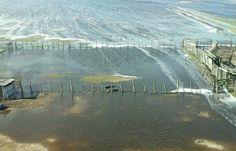 Según los primeros relevamientos realizados por CREA, INTA, SRA y una empresa de la localidad de Villegas, las inundaciones habrían generado pérdidas en el agro por más de $5.000 millones. El temporal que azotó el noroeste de la provincia de Buenos A