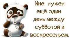 I Want Love, Love Dream, Russian Memes, A Funny, Fun Facts, Happy Birthday, Advice, Album, Humor