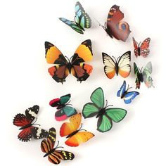 Butterfly Brooch Wall Sticker Home Room Curtain Wedding Decoration is personalized, see other cheap wedding accessories on NewChic Mobile. Mod Wedding, Wedding Events, Wedding Ideas, Wedding Themes, Magnetic Wall, Pvc Material, Wall Stickers Home, House Rooms, Belize