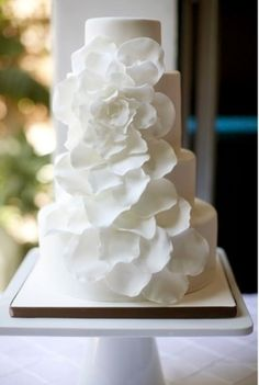 Cake by Daniani