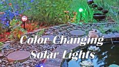 96 Led Waterproof Flickering Flame Solar Torch Light Garden Lamp Outdoor Landscape Decoration Garden Lawn Light To Help Digest Greasy Food Security & Protection