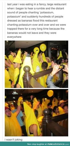 I... have no words. Except this: always take a banana to a party. Bananas are good.